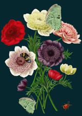 Anemones Greetings Card by Madame Treacle.
