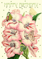 Gladioli Greetings Card by Madame Treacle.