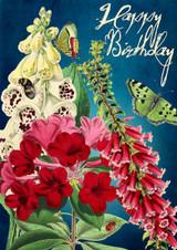Midnight Garden Birthday Card by Madame Treacle.