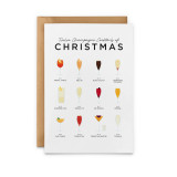 Twelve Champagne Cocktails of Christmas