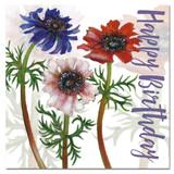 Emma Ball Anemone Birthday Card