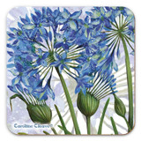 Agapanthus Coaster from Caroline Cleave
