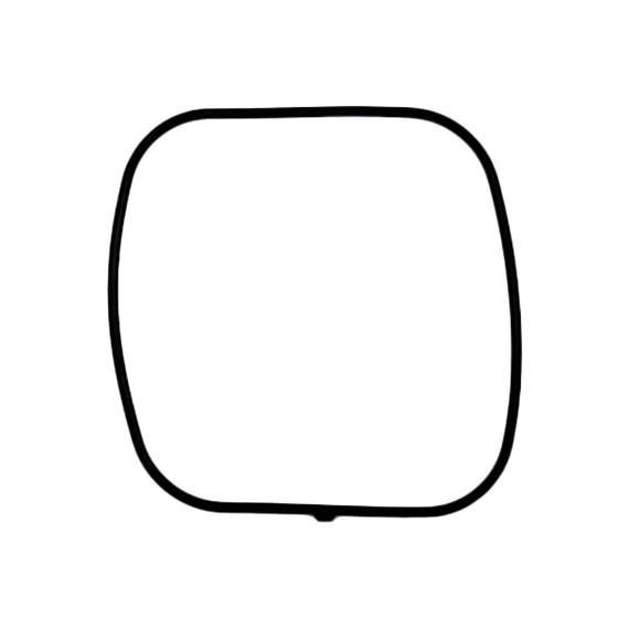 Casio Packing/O-Ring 10076812