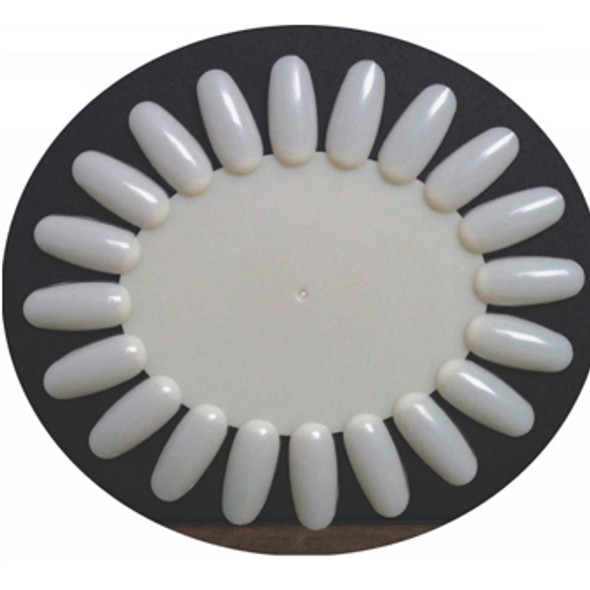 Display Wheel Oval Natural 10/Pack