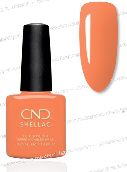 CND Shellac - Catch of the Day 0.25oz. (C)