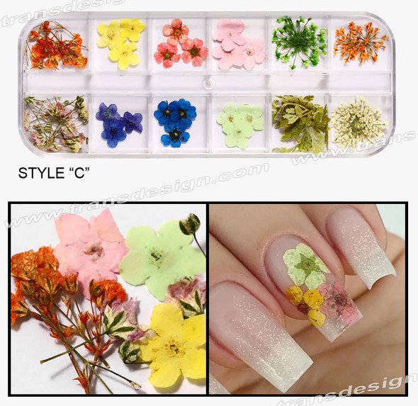 TDI - Dried Flowers Assorted 12 Colors/Pack #C