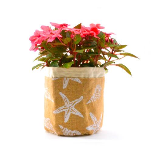 Starfish Plant Pouch | Beach Wahine
