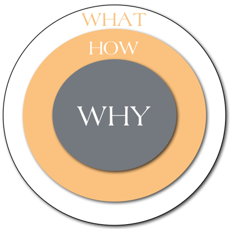 WHY We Do What We Do…