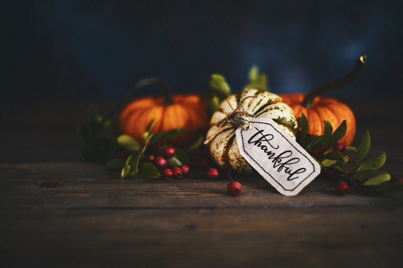 HAPPY THANKSGIVING FROM IMBUE!
