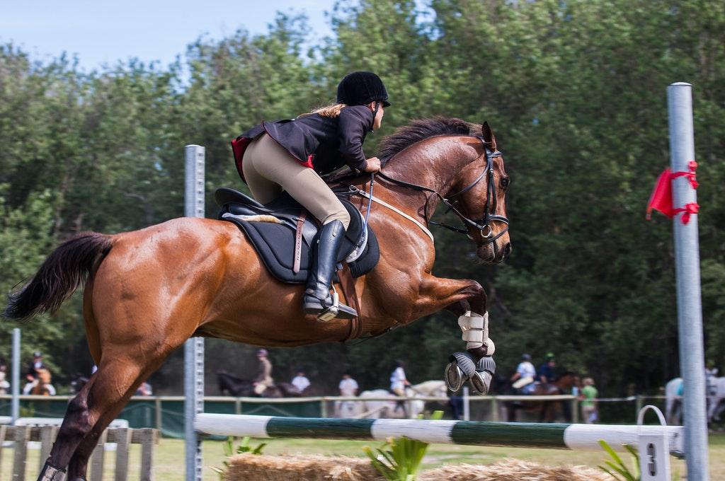 person-riding-a-horse-1559388-1-.jpg