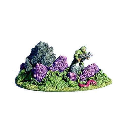 ACA001 Small Pod Plant #1