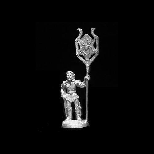 LL21801 Dark Elf Male Standard Bearer