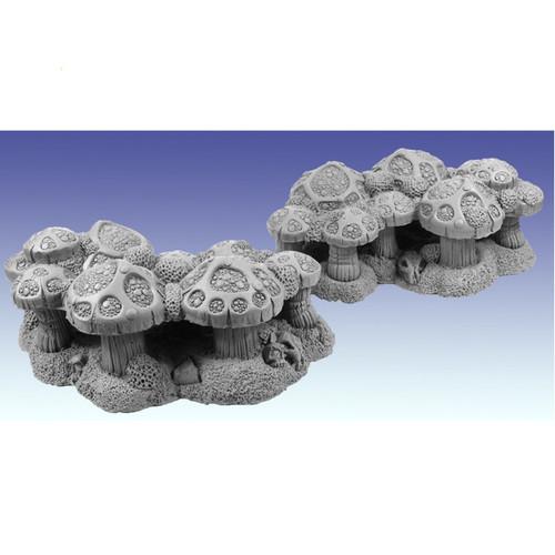 20061 Shaman's Fungi