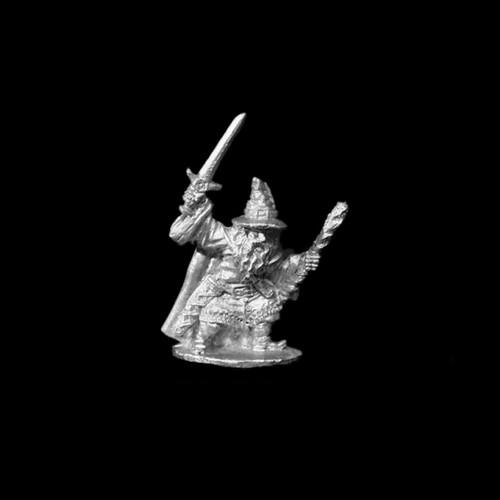 LL21206 Wizard w/ Sword & Staff