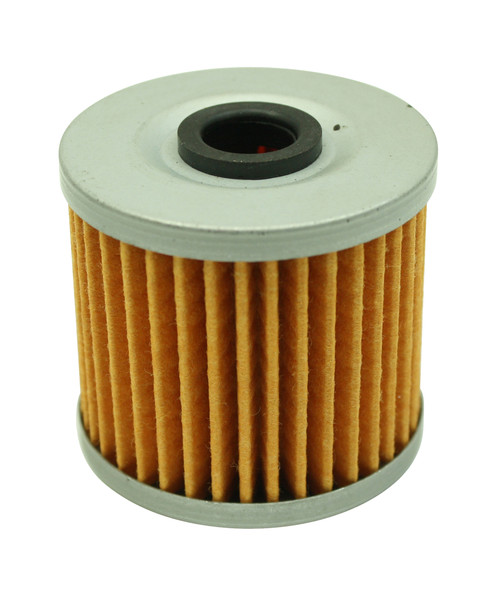 AEM High Volume Fuel Filter Element (Replacement) for 25-200BK