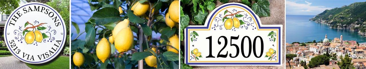 Love of Lemons and Italian Style!