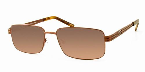 Dale Earnhardt, Jr. 6765 Designer Reading Sunglasses in Brown