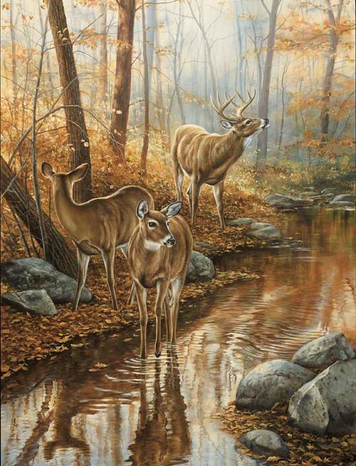 Deer Hunting Theme 240-34a-1 Artwork Micro Fiber Cleaning Cloth