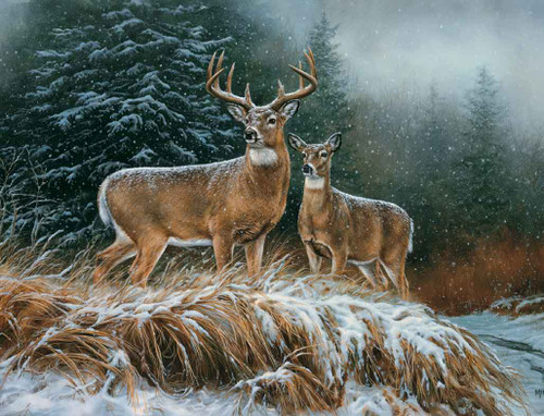 Deer Hunting Theme 240-34a-2 Artwork Micro Fiber Cleaning Cloth