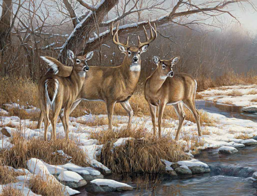 Deer Hunting Theme 240-34a-6 Artwork Micro Fiber Cleaning Cloth