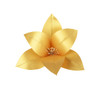 Lily Topper Gold