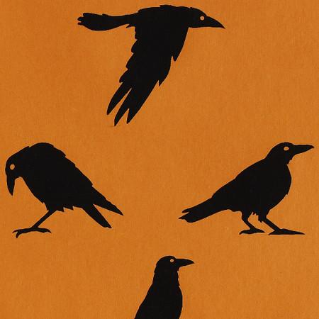 Gift Wrap - Crows - Orange