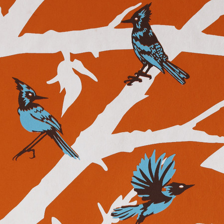 Gift Wrap - Blue Jays - Orange