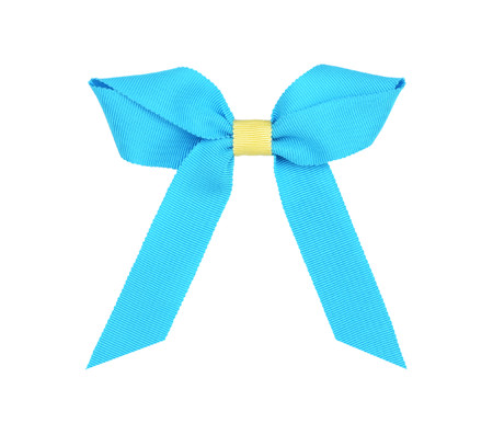 Two color Grosgrain Bow: Turquoise Topper