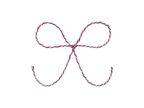 Baker's Twine - Airmail Stripe