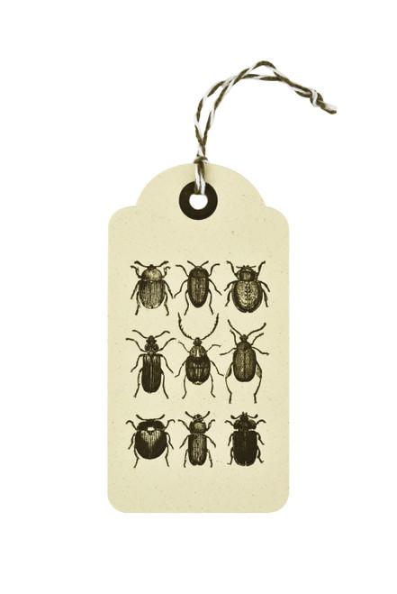 Paper Tag - Letterpress Beetle