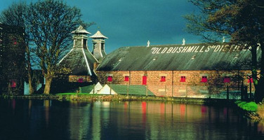 Bushmills to Expand Distillery