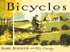 Sears Roebuck and Co. Vintage Bicycle Poster
