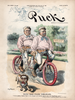 Puck Magazine - July 1, 1896 Bicycle Poster