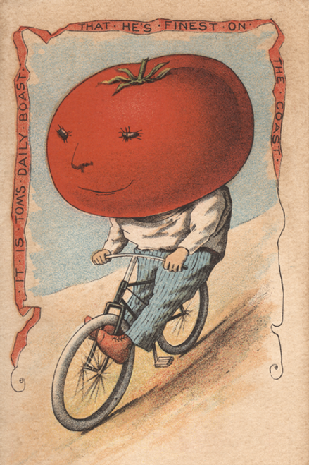 Tomato Vegetable Rider Bicycle Poster