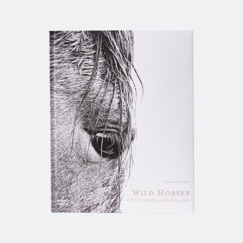 Wild Horses of Cumberland Island by Anouk Masson Krantz