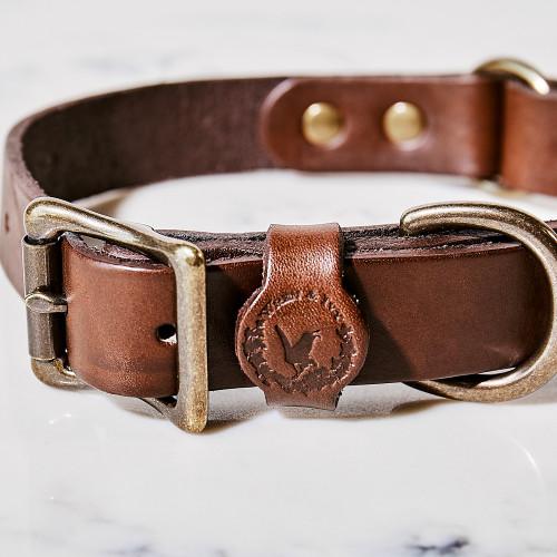 Whiskey Dog Collar by Wren & Ivy
