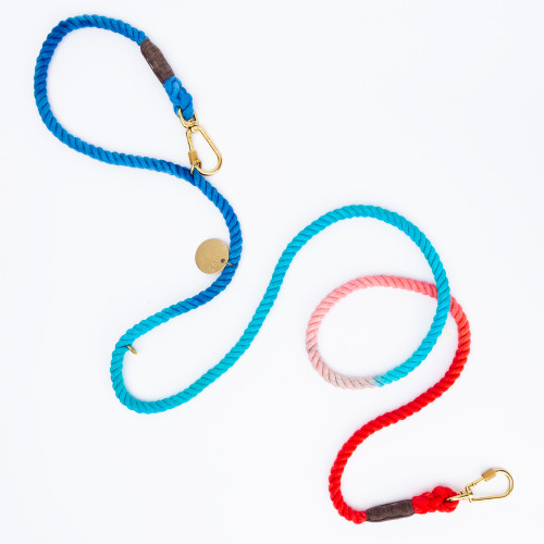 Sweet Pea Ombre Dog Leash by Found My Animal