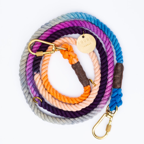 Lois Ombre Dog Leash by Found My Animal