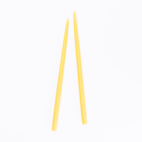 Honeysuckle Tapered Candles (set of 2) by Creative Candles
