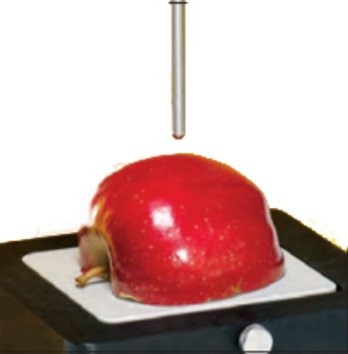 Magness-Taylor Probes for puncture test to measure hardness of fresh fruit and vegetables