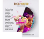 MIELLE Rice Water Collection, Excellent For Length Retention, Bundle