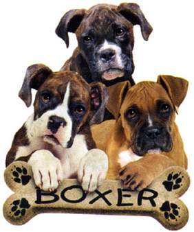 Boxer T-shirt - Imprinted 3 Boxer Puppies