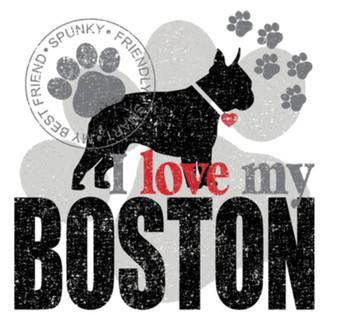 Love My Boston T-shirt