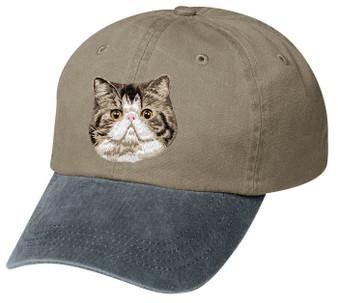 Exotic Shorthair Hat