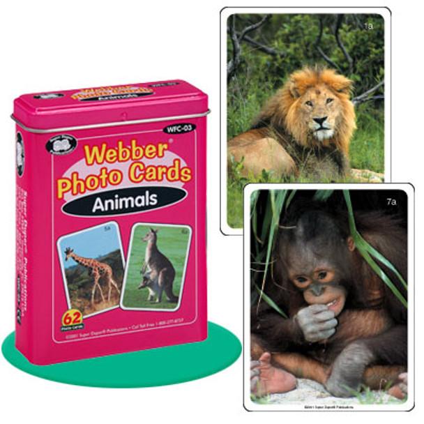 Webber Photo Cards Animals