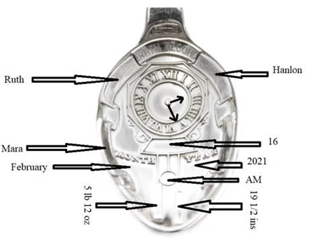 English Sterling Birth Record Spoon in Presentation Case (C1288)