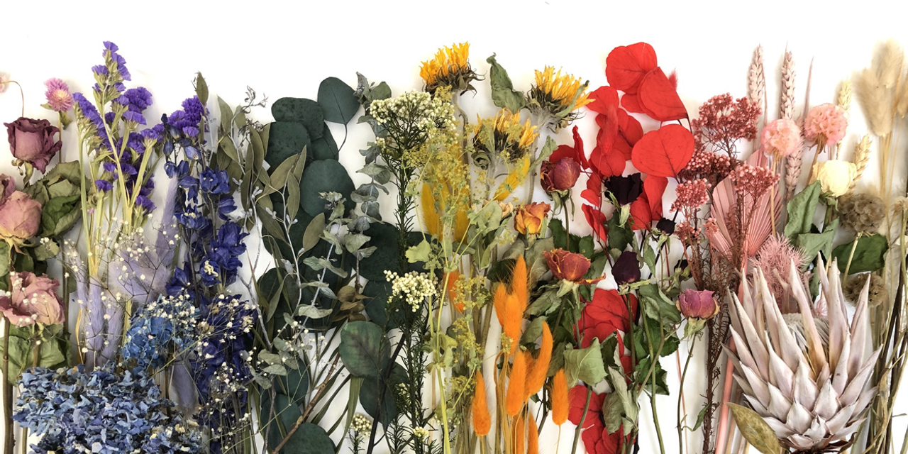 Dried | Preserved Flowers
