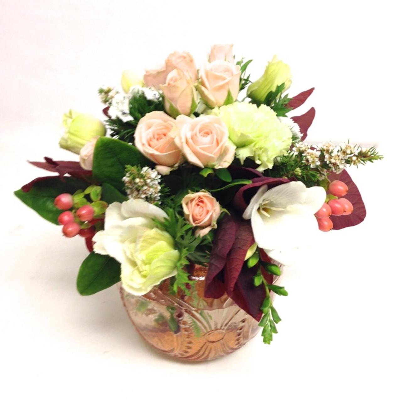 Amaryllis for Flowers