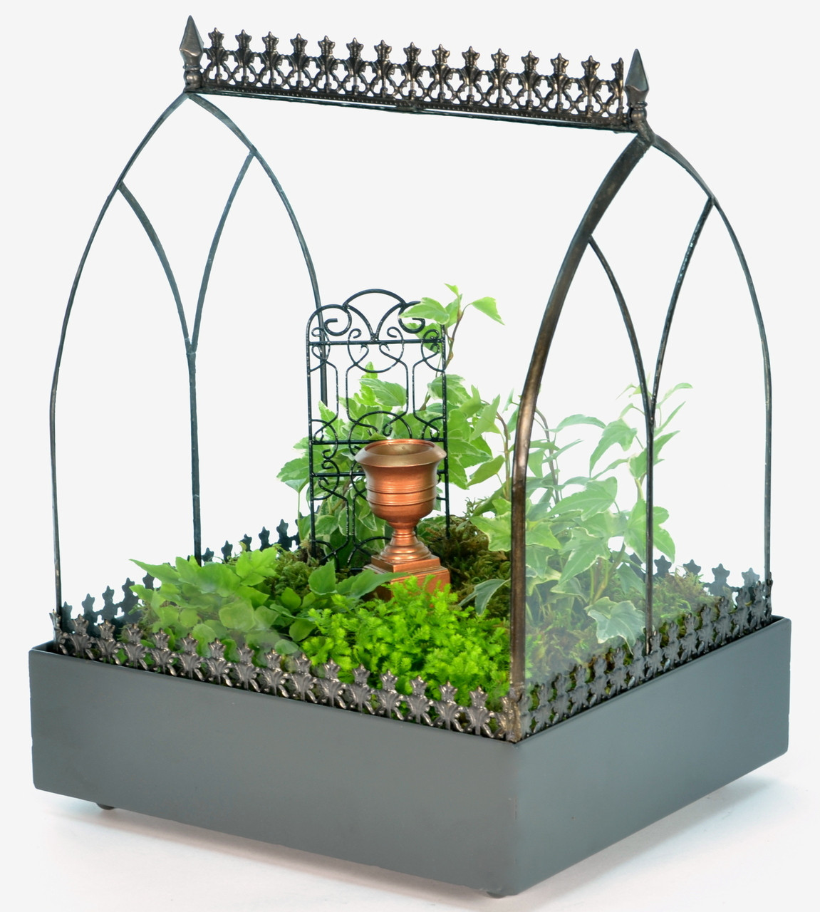 Most Stylish Wardian Cases And Terrariums