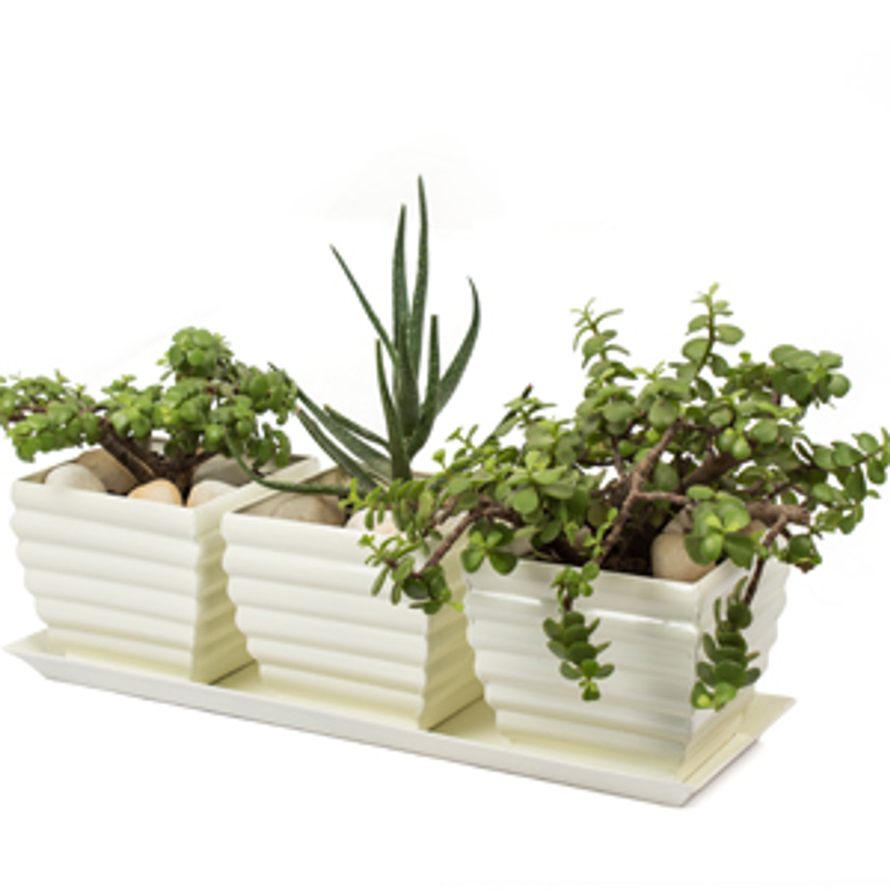 3 Piece I Love you indoor and outdoor planter. Heart